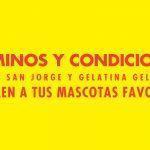 Términos y Condiciones Néctar San Jorge y Gelatina Gel 'hada te traen a tus mascotas